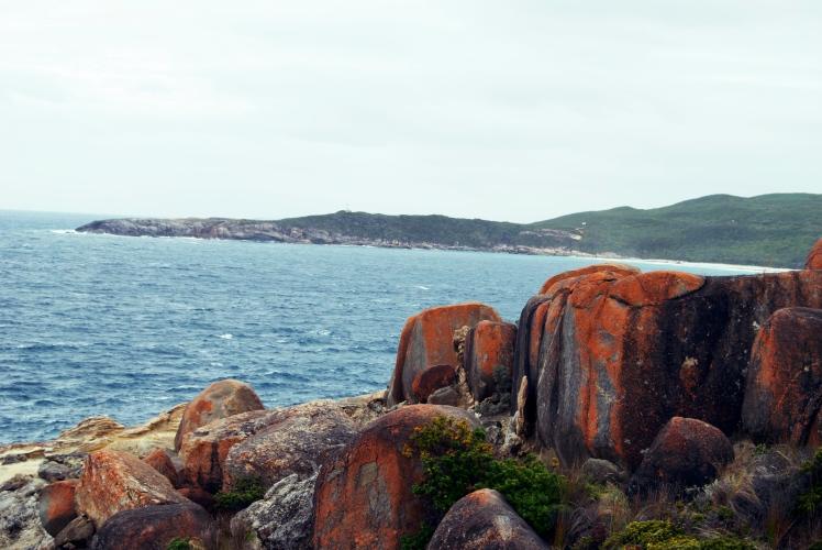 Rocks near blowholes.jpg
